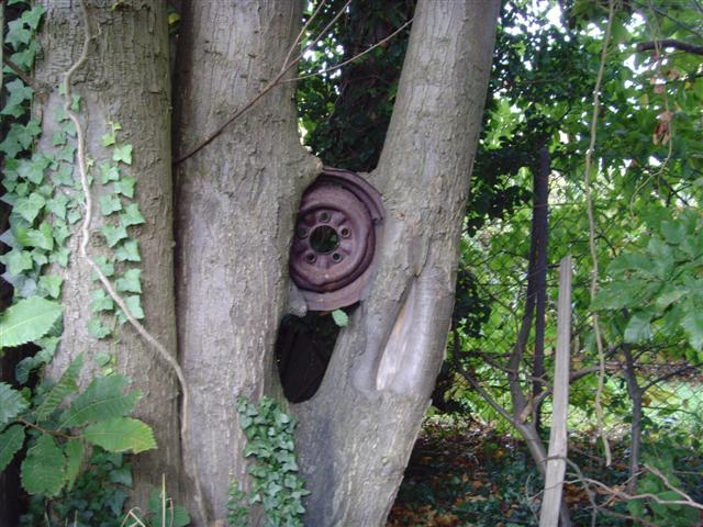 treemachinery.jpg - 75.11 kB
